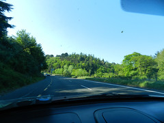 Driving home from Newcastle (Glen of the Downs)