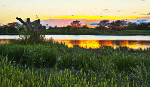 lawrencekansas bakerwetlands wakarusariver oilpaintfilter patrickemerson mitigationarea patricknancyworktogether