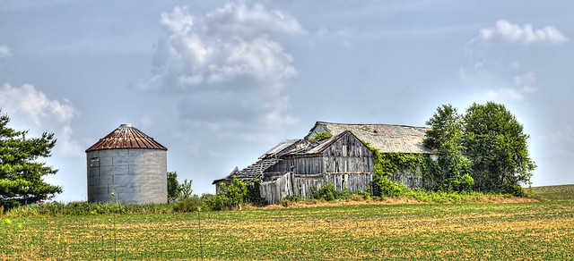 _MG_6857 Rural Barn