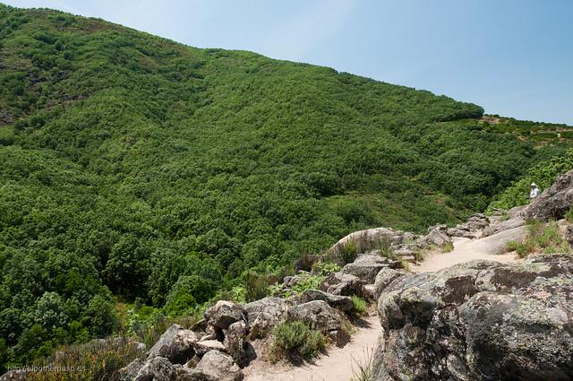 A lo largo del camino podremos disfrutar de las vistas de los bosques que cubren la sierra.