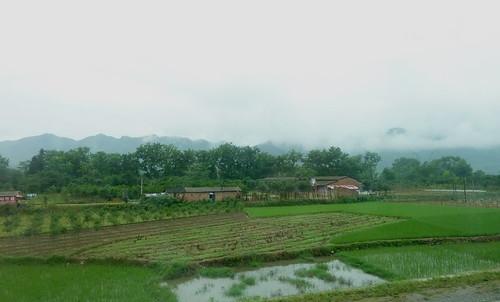 C-Guangxi-Route-Guilin-Dazhai (11)