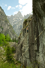 Climbing it high