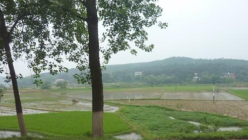 C-Hunan-Route Changsha-Hengshan (16)