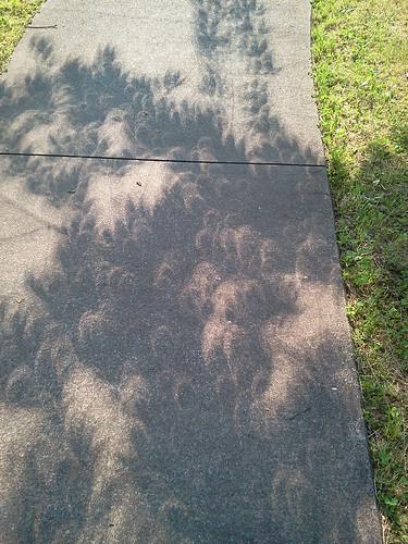 2012-05-21 07.38.25 部分日食による木漏れ日