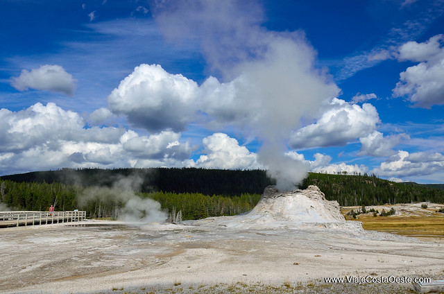 sur de YELLOWSTONE