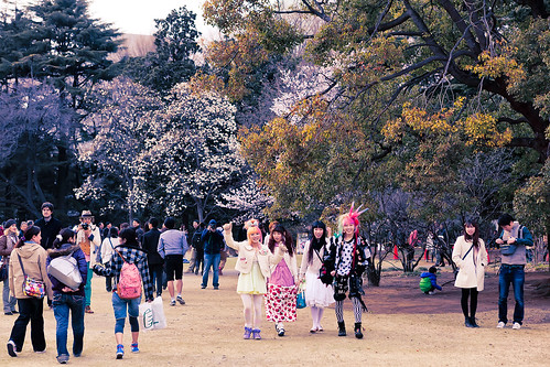Hanami with Harajuku Kids