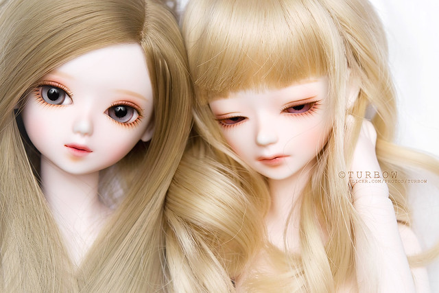"Bluefairy TF limited edition ""Blossom Bud"""