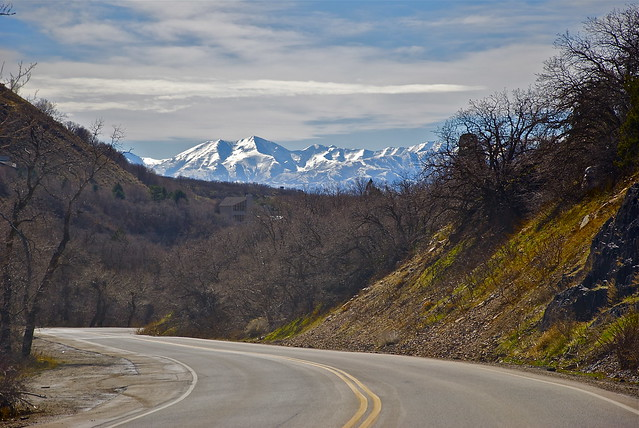 Driving through Cottonwood Canyon