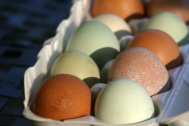 local colored eggs