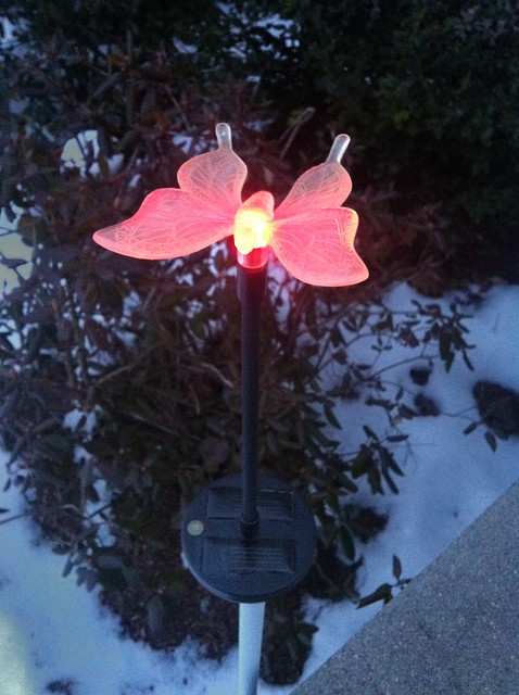 Fully-recharged solar light glowing brightly!