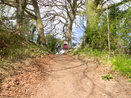 End of the steep bit