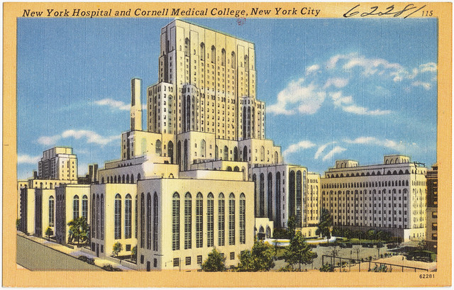 Medical Transcription city college of ny subjects