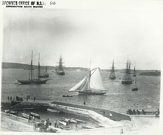 View from the western side of Farm Cove looking north-east toward Fort Denison, Sydney (NSW)