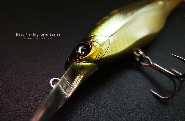 Bass fishing lure series lure camera for Fishing lure with camera