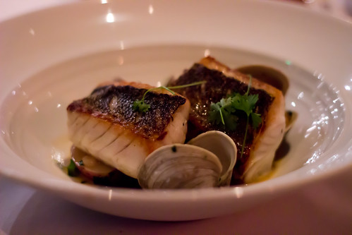 Walleye at Lola