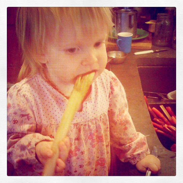 Raw rhubarb, and a little one loves it!