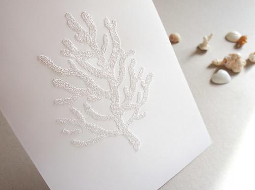 white-sea-coral