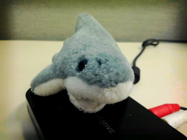Stuffed shark attack!!!
