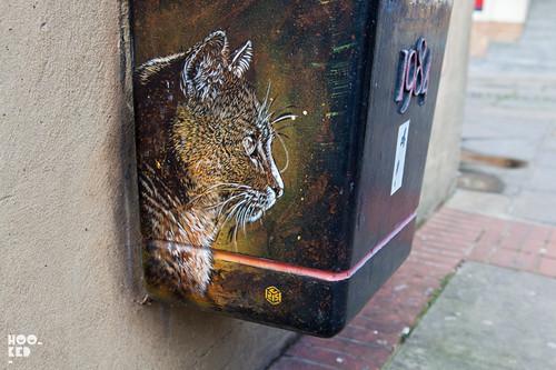 French street artist C215's cat stencil work.
