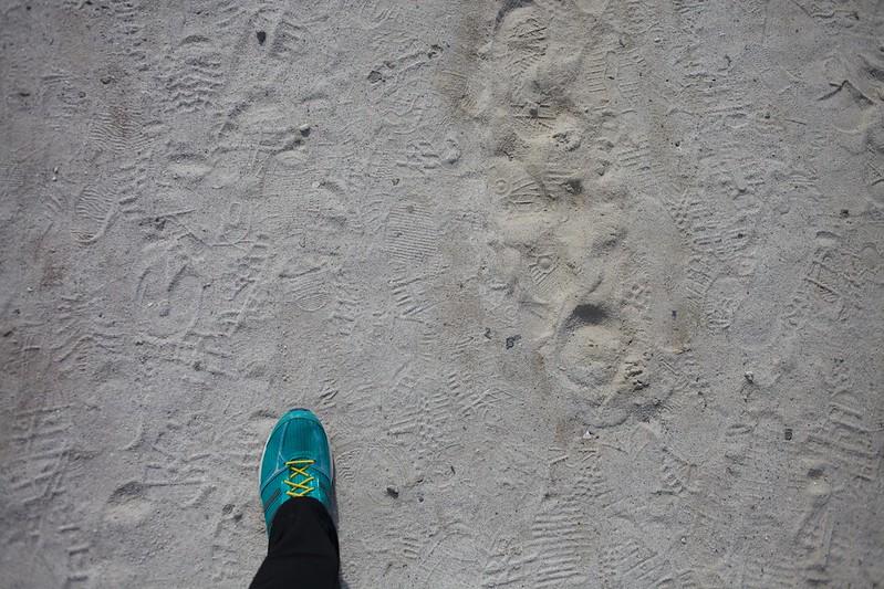 青森2012 極楽浜
