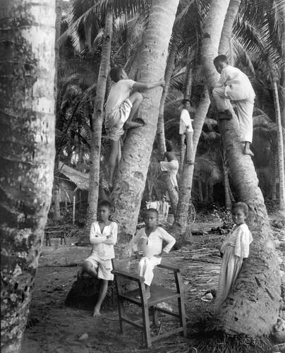 Visayan children at home among the coconut trees, Cebu, Philippines, late 19th or early 20th Century  Underwood & Underwood