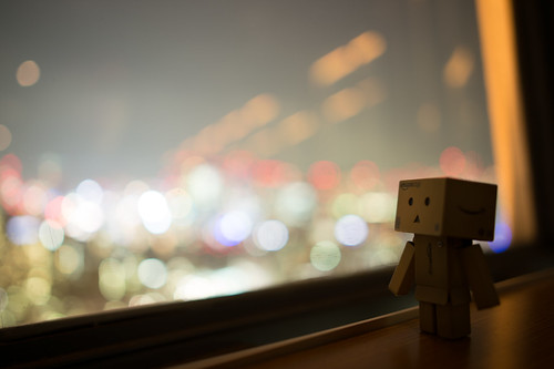 Danbo enjoying the view from Tokyo Tower
