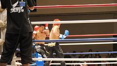 striking combat sports, boxing ring, professional boxing, individual sports, contact sport, sports, combat sport, muay thai, shoot boxing, kickboxing, sanshou, boxing,