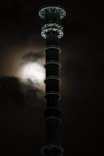 望月と世界一