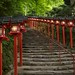 201206 Japan 183 by lucy_gft