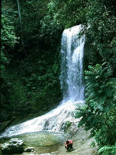 Falls in Cordillera Central