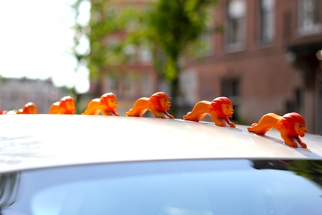 Orange lions on a car