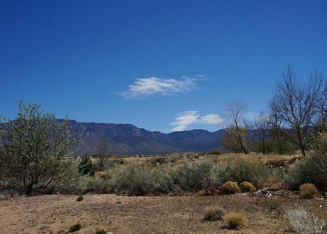 to Albuquerque-15.jpg