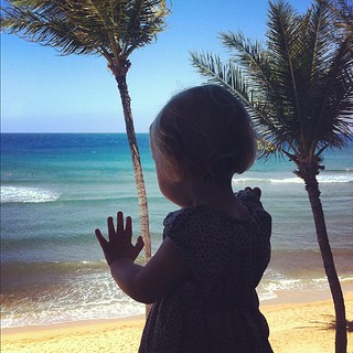 Stella watches the surfers, Maui