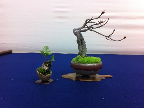 Bonsai y hierba