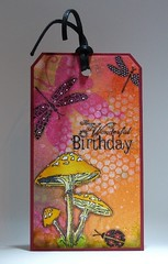 120322 Linda birthday Mushrooms