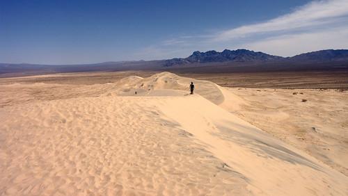 Kelso Dunes 09