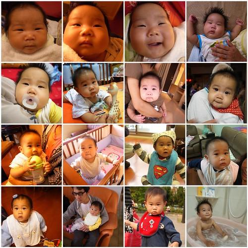 16個月的寶貝