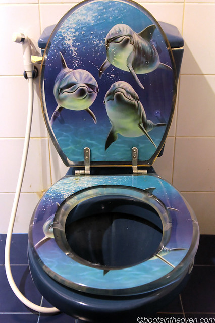 Our super-weird, super-awesome toilet