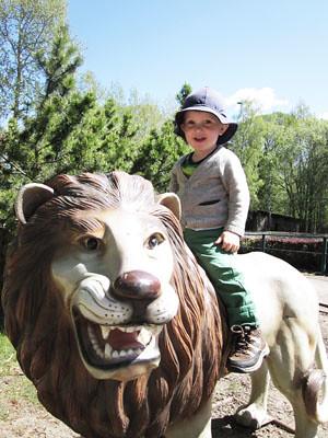 djurpark04