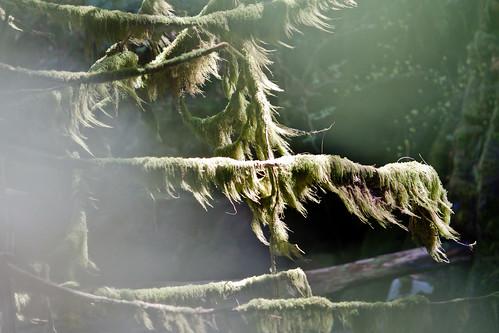 2012_05_CypressFalls_1648