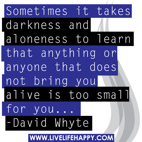 Sometimes it takes darkness and aloneness to learn that anything or anyone that does not bring you alive is too small for you. -David Whyte