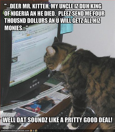 lol nigerian-scam kitteh