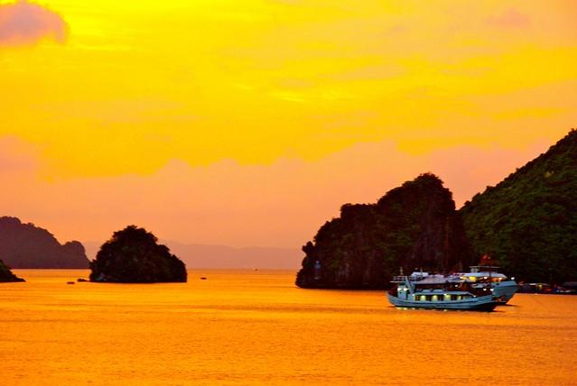 cruise down halong bay