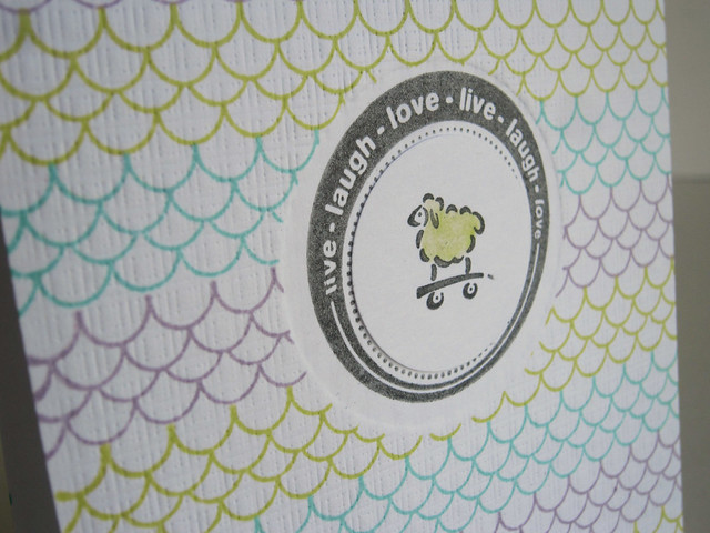 Boy or Girl Baby Sheep Scallop Card