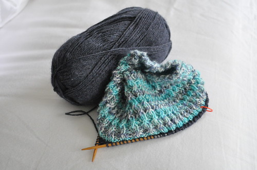 this week :: more knitting