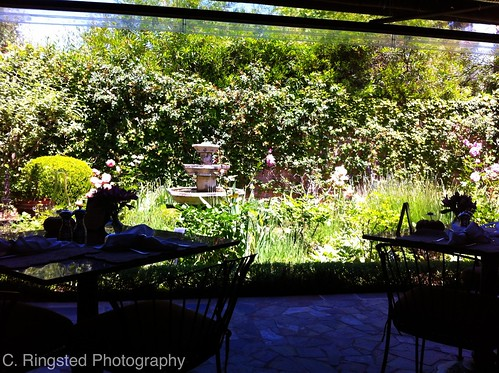 Life: Lunch @ Suzanne's Cuisine in Ojai by Sanctuary-Studio