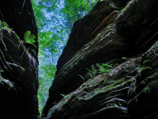 Witches' Gulch