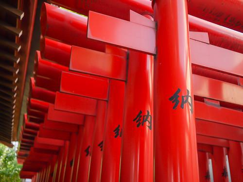 Torii at Hakumai-inari Shrine by hyossie