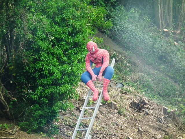 Sulking Spiderman by kenjonbro
