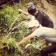 終わったらみんなで草刈り。でもこれからの時期が心配だ(>_<) #bmx #trails
